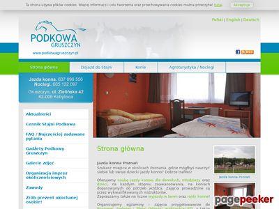 Agroturystyczne, Nauka jazdy konnej Poznań