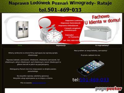 Naprawa Lodówek i Zamrażarek Poznań