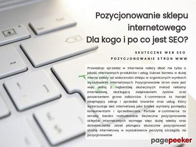 Szablon aukcji allegro od skutecznyweb.pl