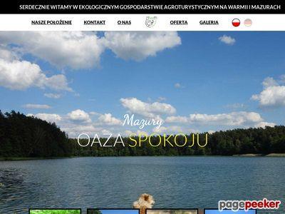 Www.lesnejezioro.pl domki na Mazurach
