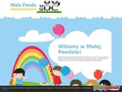 Żłobek Mała Panda koło Żółwina