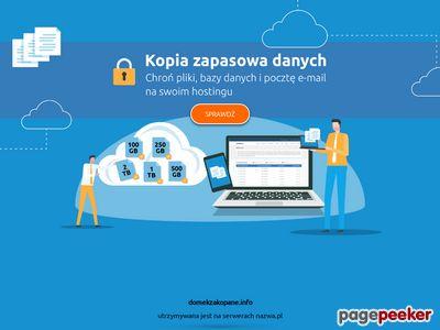 Domekzakopane.info - Elkowe Domki