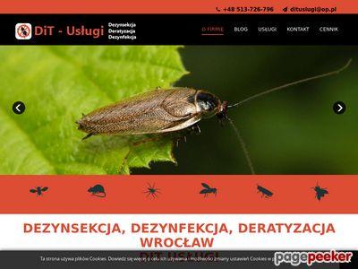 Dezynsekcja i deratyzacja Wrocław