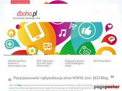 Dboho.pl - seo blog