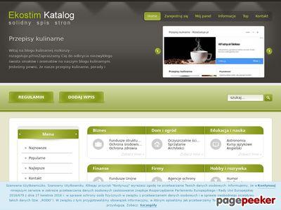 Katalog stron www